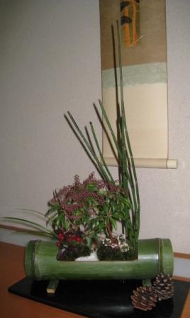 20100112-IMG_1468.JPG