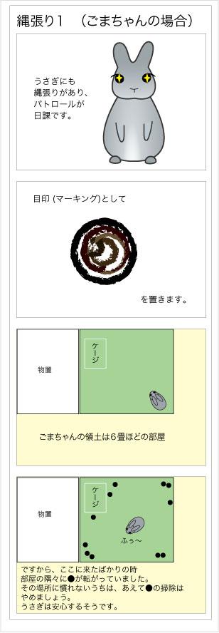 20100110-m6-1-1.jpg