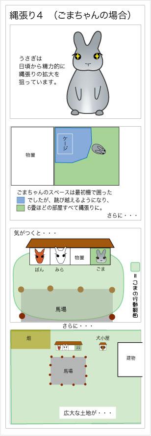 20100110-m6-4.jpg