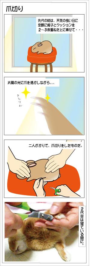 20100311-m12-2.jpg